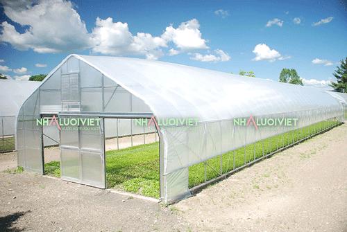 Nhà trồng rau được lắp màng nilon israel