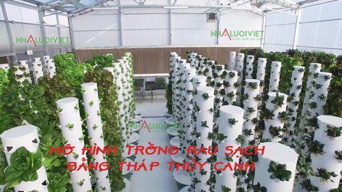 Mô hình trồng rau sạch bằng tháp thủy canh