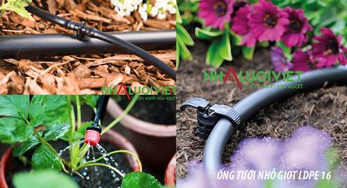 Sử dụng Ống tưới nhỏ giọt LDPE trong trồng trọt