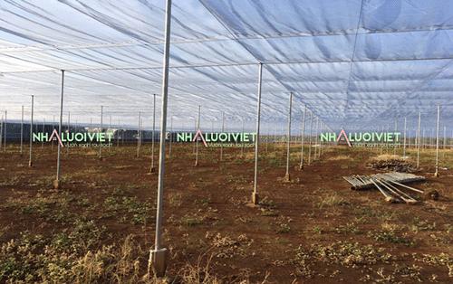 Lưới côn trùng 18 mesh