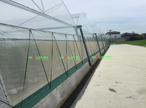 Lưới chắn côn trùng 50 mesh sử dụng làm nhà màng