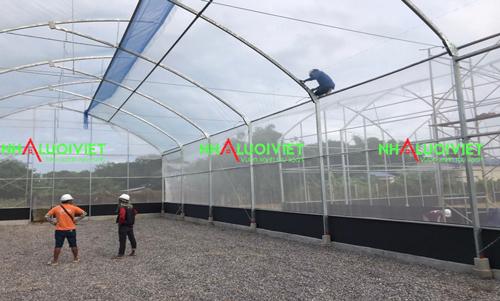 Lưới 50 mesh được sử dụng làm nhà kín