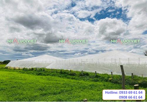 Nhà Lưới Hình Nón trồng rau giá rẻ