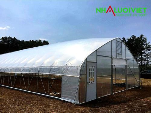 Mô hình nhà màng trồng raumini nhìn tổng thể bên ngoài