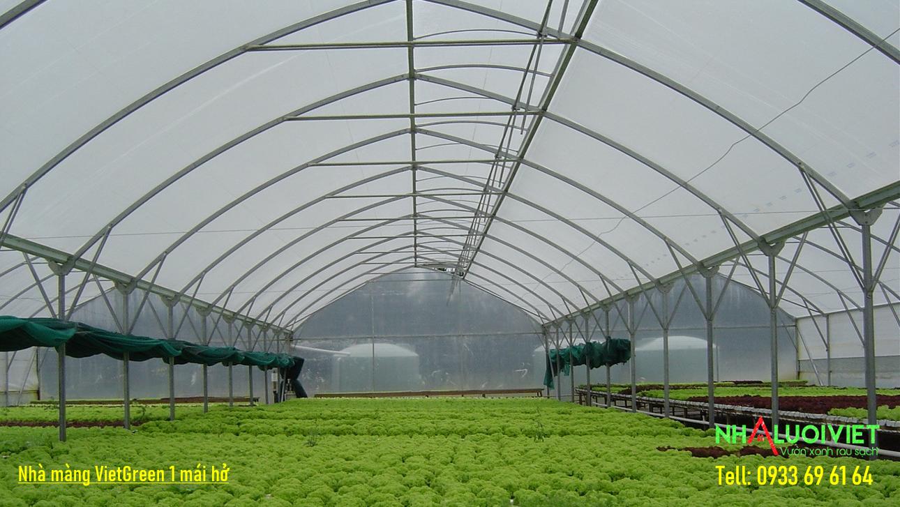 Nhà màng trồng rau công nghê cao
