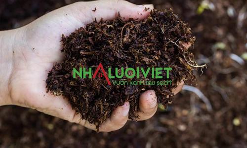 Cách ủ phân gà sử dụng cho cây trồng