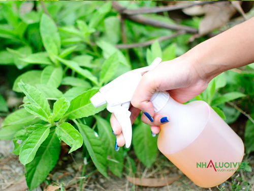 Sử dụng thuốc diệt công trùng tự chế