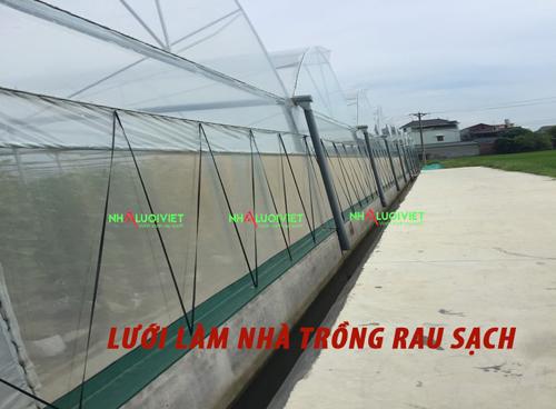 Lưới làm nhà trồng rau sạch