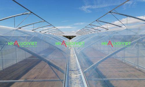 Nhà kính lợp mái bằng màng PE