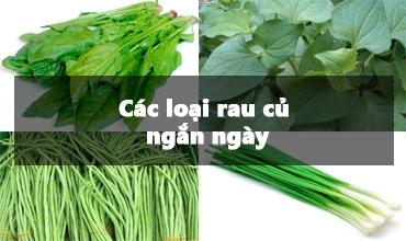 Các loại rau củ ngắn ngày