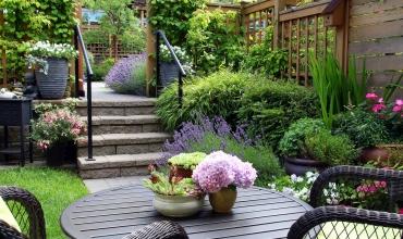 Cách thiết kế một khu vườn nhỏ