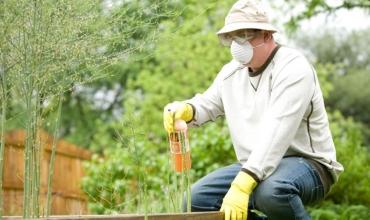 Xác định loại phân bón lỏng tối ưu cho nông nghiệp