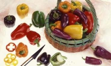 Sâu hại chính của các loài ớt