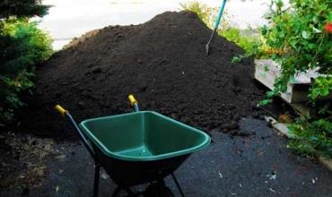 Mẹo trồng vườn rau bằng lớp đất mặt